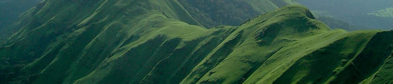 cropped-Mount-Nimba.jpg